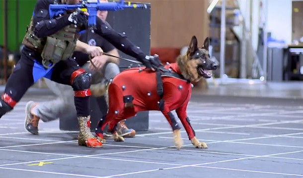 call-of-duty-ghosts-mocap-dog_960-1.0_cinema_640.0